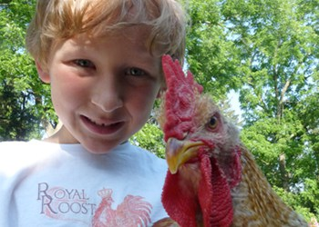 Emmett with Chicken - Royal Roost