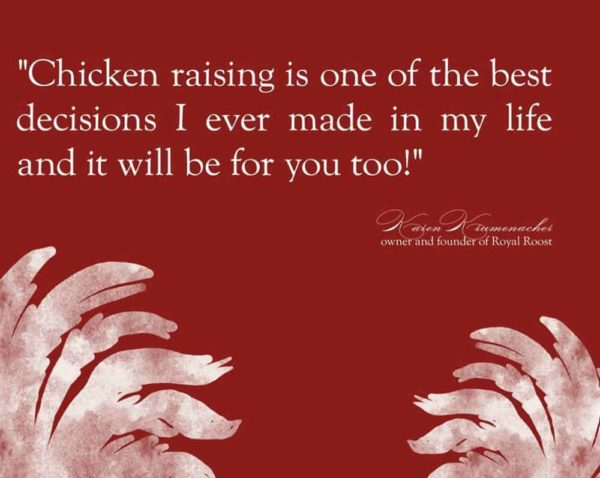 Chicken Raising Journal from Royal Roost promo